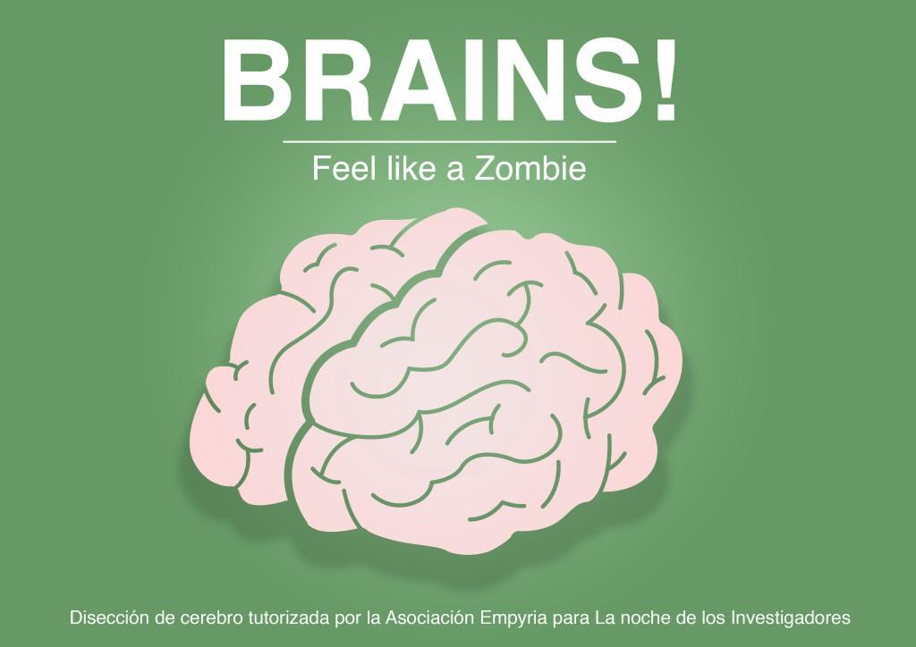 brains-1024x724